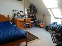 Spacious double bedroom in graduate house; August and September
