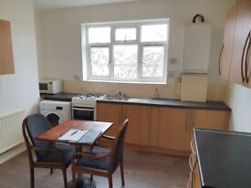 Newly redecorated 2 double bedroom split level flat on Bruce Grove, London N17.