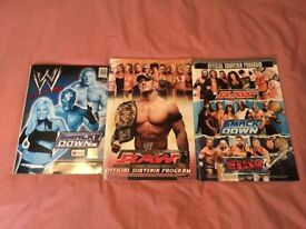 WWE Raw Smackdown ECW Live Event Souvenir Programme Program 2006 x 2 / WWE Sticker Book Album 2003
