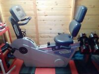 Techno Gym Recumbent Exercise Bike