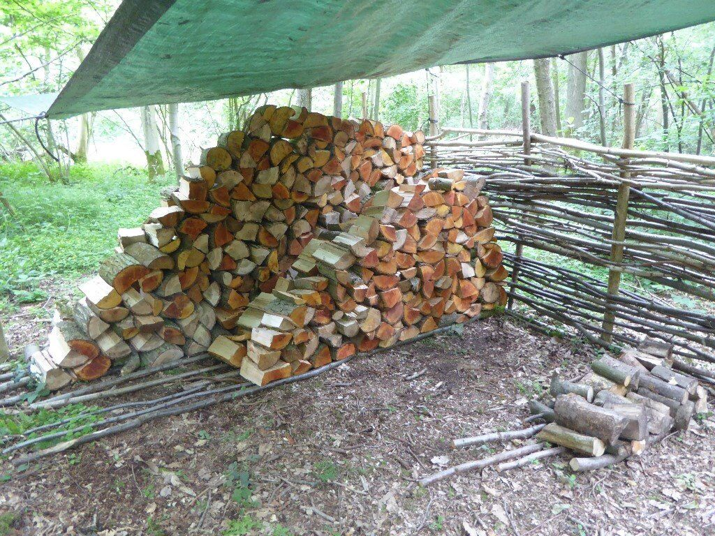 Sustainable Firewood Logs For Sale From Norfolk Woodland
