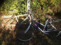 2 mountain bikes