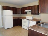 Modern and clean 3 BDRM unit available Sept 1!