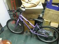 Ladies 24 inch bike