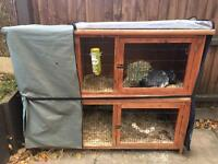 Rabbit & Hutch