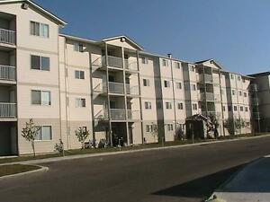 $650 First Month - 1 & 2 Bedrooms Avaliable - 5 Appliances