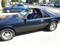 83 Mustang hatchback T-Top