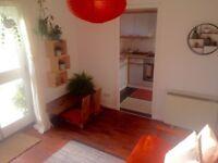 Lovely Hackney 1 bed garden flat 6th Nov to 6th Dec