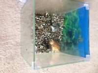 Beautiful square fish tank with glass lid