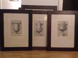 Set of 3 black & white, framed, Order of Greek Architecture Vase Print