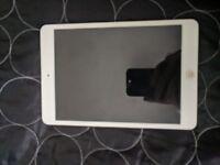 iPad mini 30GB
