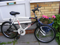 """BOYS RALEIGH 20"""" WHEEL BIKE WITH GEARS IN GREAT WORKING ORDER AGE 7+"""