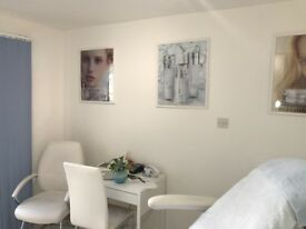 Modern Therapy Room in FULHAM
