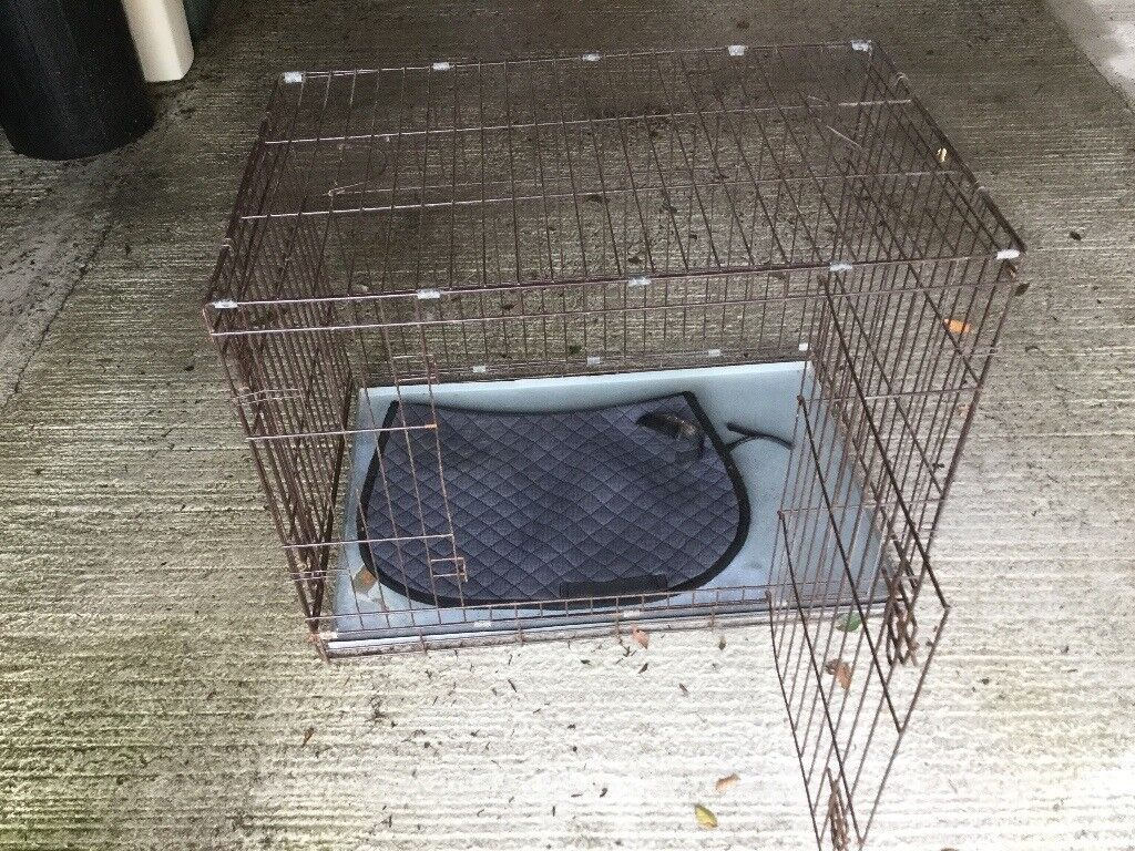 Collapsible dog crate with removable base