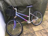 Ladies Bike 10 Speed with Basket