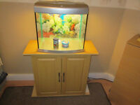 Fish tank and cabinet, with filter.