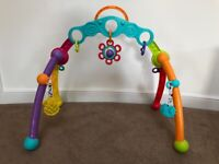 Baby Fold and Go Activity Playgym