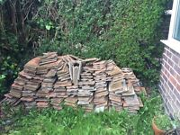 Used rosemary tiles. -free
