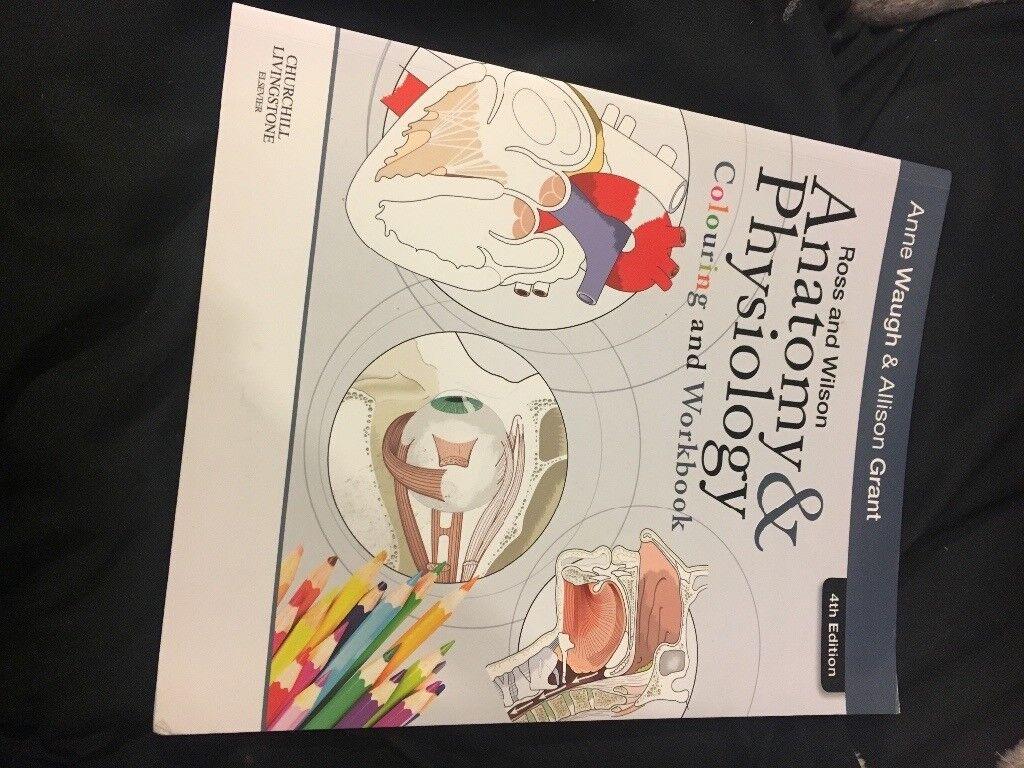 Fein Ross Anatomy And Physiology Zeitgenössisch - Menschliche ...