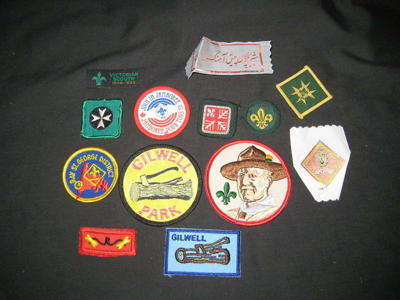 13 diff Worldwide Scout patches   #13             c24