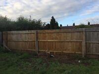 Garden fence panels and garden gate