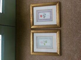 A pair of Sharon Bassin Fine Art Prints
