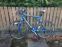 VIKING Race Bike £100 ONO
