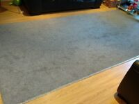 ***Long Carpet for Living Room in excellent condition***