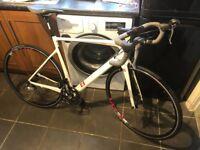 13 Intuition Alpha Carbon Road Bike - 56cm