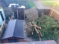 Free wood in exchange for clearing all the branches in picture shown.