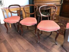 Rosewood Victorian balloon back Chairs.