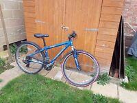 Ridgeback Mx2 Bicycle with free lock