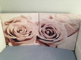 Next rose canvases
