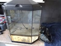 25 Litre fish tank with light and Fluval filter pump