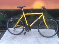 "Coventry Eagle 26"" Domain Large Mountain Bike"