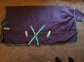 Purple Rambo Rug 5'9. VGC. £50 ono