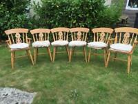 6 Quality pine dining chairs set including cushions