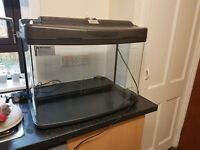 60 litre fish tank in great condition