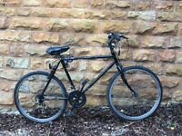 Used bicycle in great condition