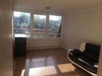 Spacious Two double bedroom flat in Reedham Close very close to Tottenham Hale Train Station.