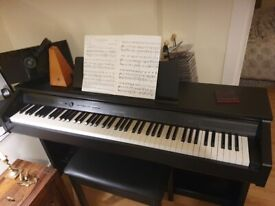 Piano Lessons for beginners (children)