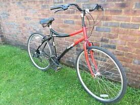 Raleigh cruiser bike