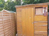 6x6 shed FREE - needs a new roof.