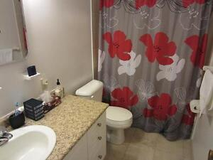 Ideal for London students! Secure bachelor apartment for rent London Ontario image 3