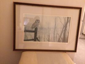 Framed and mounted limited edition signed print of owl in winter by John J Holmes
