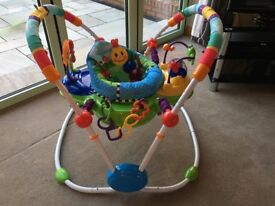 Baby Einstein Jumperoo in excellent condition