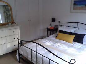 King size black metal frame bed