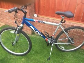 Gents/boys Raleigh mountain bike