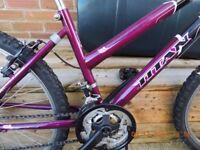 bike with 24 wheels