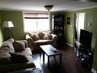Beautiful, fully furnished room in Central St. John's